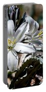 Sun Soaked Desert Lily Portable Battery Charger