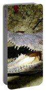 Sunbathing Croc Portable Battery Charger
