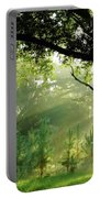 Sunbeams In The Forest Portable Battery Charger