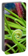 Sundew Drosera Capensis 4 Portable Battery Charger