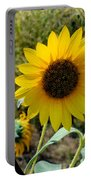 Sunflower 12 Portable Battery Charger