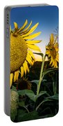 Sunflower Evening Portable Battery Charger