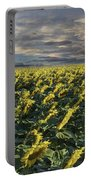 Sunflower Fields Near Denver International Airport Portable Battery Charger