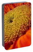 Sunflower Fire 1 Portable Battery Charger