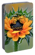Sunflower Opens Portable Battery Charger