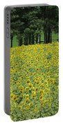 Sunflowers 3 Portable Battery Charger