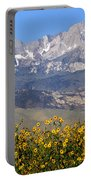 2a6742-sunflowers And Mount Humphreys  Portable Battery Charger