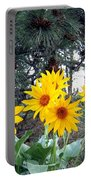 Sunflowers And Pine Cones Portable Battery Charger by Will Borden