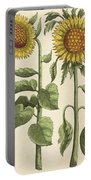 Sunflowers Illustration From Florilegium Portable Battery Charger