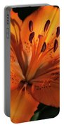 Sunkissed Lily Portable Battery Charger