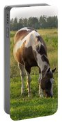 Sunkissed Tobiano Portable Battery Charger