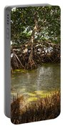 Sunlight In Mangrove Forest Portable Battery Charger