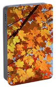 Sunlight In Maple Tree Portable Battery Charger