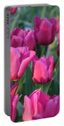 Sunlight On Pink Tulips Portable Battery Charger