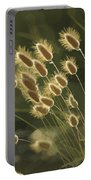 Sunlight On Wild Grasses Portable Battery Charger