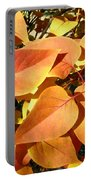 Sunlit Fall Lilac Portable Battery Charger