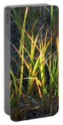 Sunlit Grass Portable Battery Charger