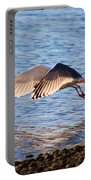 Sunlit Gull Wings Portable Battery Charger