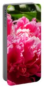 Sunlit Pink Peony Portable Battery Charger