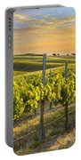 Sunlit Vineyard Portable Battery Charger