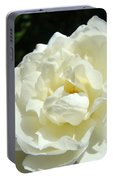 Sunlit White Rose Art Print Floral Giclle Print Baslee Troutman  Portable Battery Charger