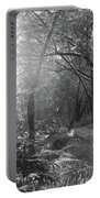 Sunlit Woods, West Dipton Burn Portable Battery Charger