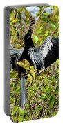 Sunning Anhingas Bird One Portable Battery Charger