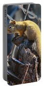 Sunning Squirrel Portable Battery Charger