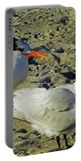 Sunning Terns Portable Battery Charger