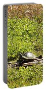 Sunning Turtle In Swamp Portable Battery Charger