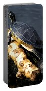 Sunning Turtles Portable Battery Charger