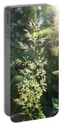 Sunny Afternoon Portable Battery Charger