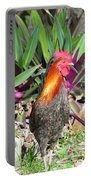 Sunny Cock Portable Battery Charger