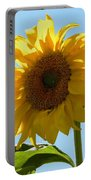 Sunny Day Portable Battery Charger