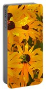 Sunny Days Portable Battery Charger