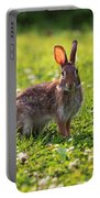 Sunny Bunny Portable Battery Charger