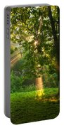 Sunny Rays Portable Battery Charger