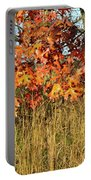 Sunrise On Oaks In Glacial Park Portable Battery Charger