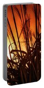 Sunset Grass Portable Battery Charger