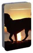 Sunset Howl Portable Battery Charger