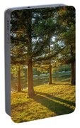 Sunset In The Park Portable Battery Charger