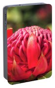 Sunset Light On A Wild Waratah Flower Portable Battery Charger