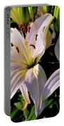 Sunset Lilies Portable Battery Charger