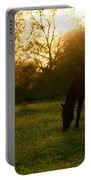 Sunset Over A Spring Meadow Portable Battery Charger