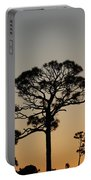 Sunsetting Trees Portable Battery Charger