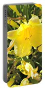 Sunshine And Flowers Portable Battery Charger
