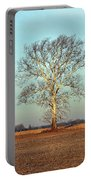 Sunshine Sycamore Portable Battery Charger