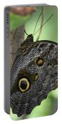 Superb Markings On An Owl Butterfly In A Garden Portable Battery Charger