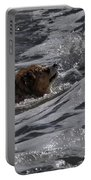 Surfer Dog 2 Portable Battery Charger
