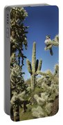 Surrounded Saguaro Cactus Wren Portable Battery Charger
